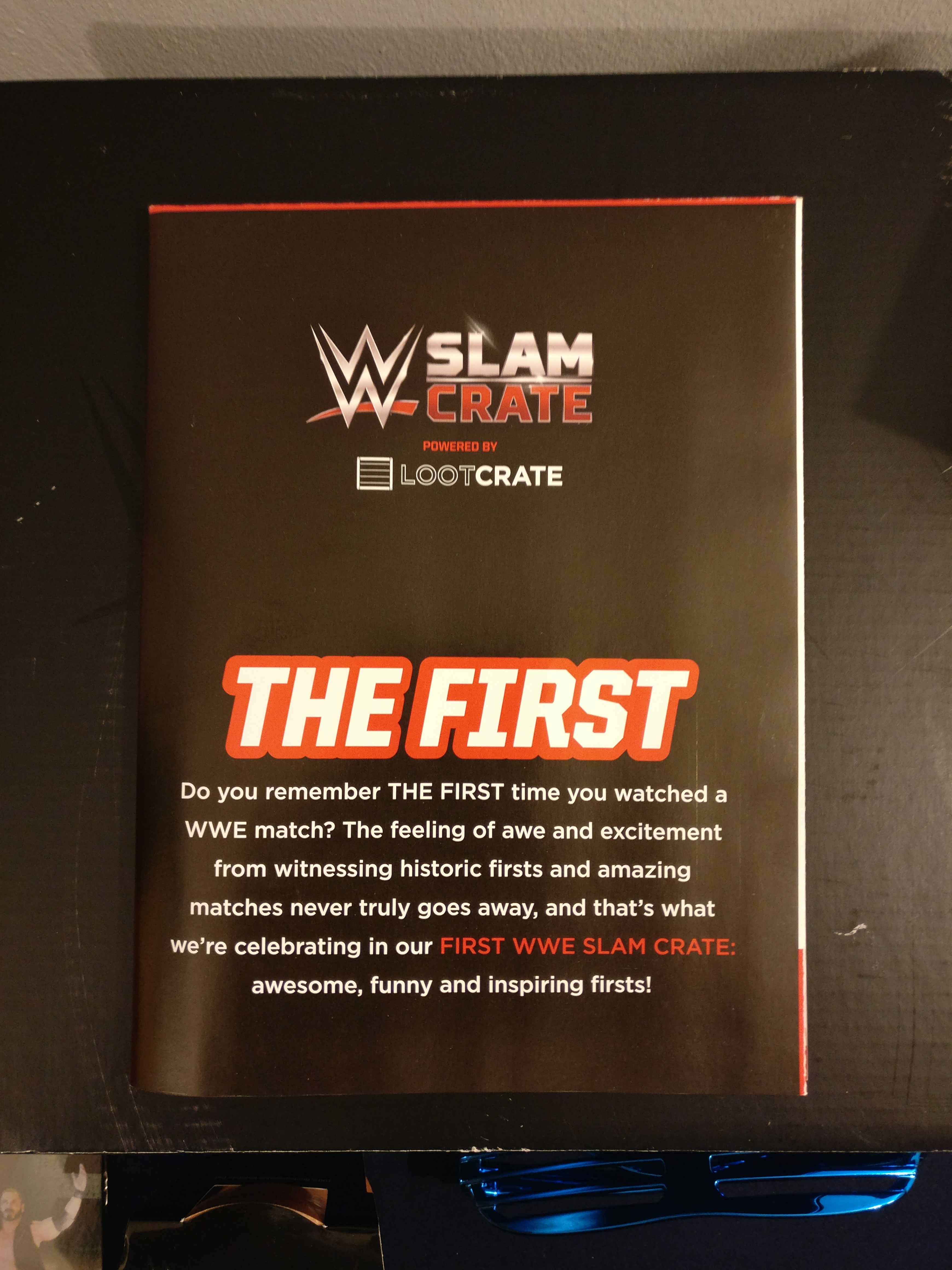 WWE Slam Crate LootCrate The First Enzo /& Big Cass New Day Championship Pin